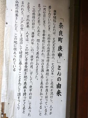 050身代わり猿4.JPG
