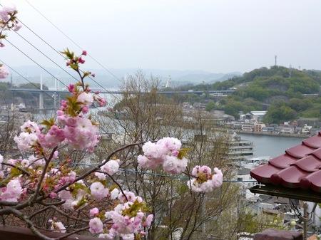 1001尾道3.JPG