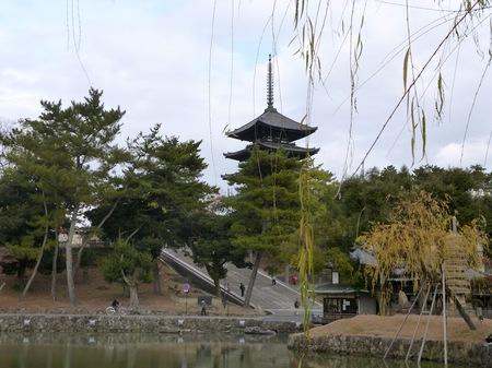 101奈良公園2.JPG