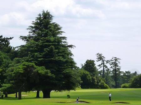 130627ゴルフ11.JPG