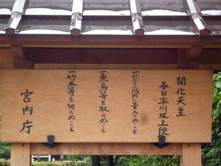 199開化天皇陵1.JPG