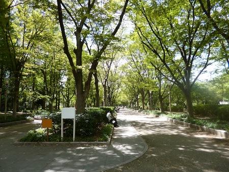 222靱公園2.JPG
