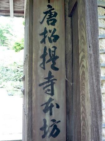 309唐招提寺5.JPG