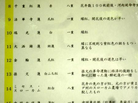 309唐招提寺7.JPG