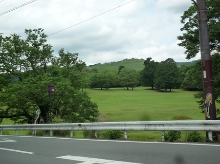 321奈良公園8.JPG