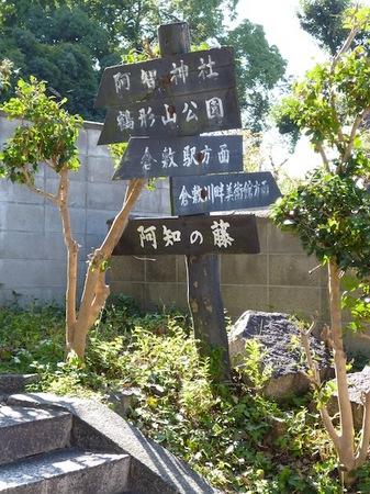 486阿智神社1.JPG