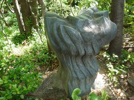 629中自然の森3.JPG