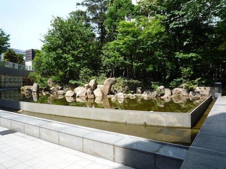 629中自然の森9.JPG