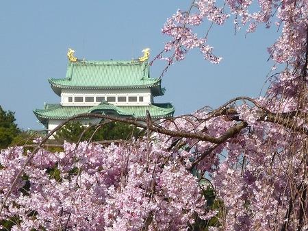 673名古屋城散歩2.JPG