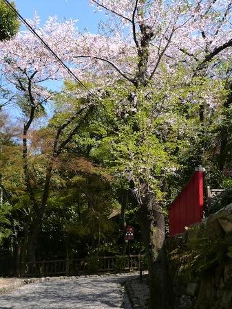 693国宝犬山城3.JPG