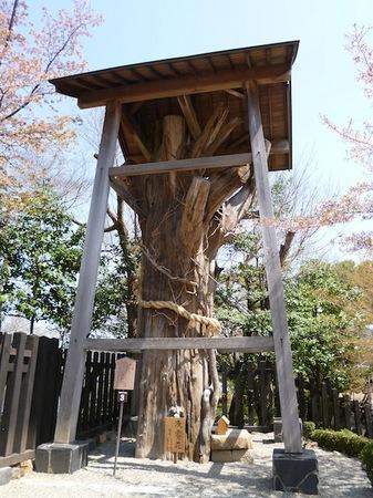 724国宝犬山城1.JPG