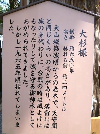 724国宝犬山城2.JPG