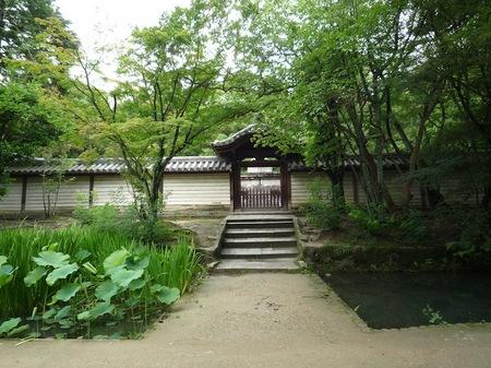 309唐招提寺9.JPG
