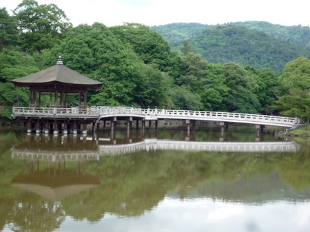321奈良公園10.JPG