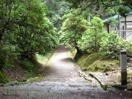 321奈良公園3.JPG