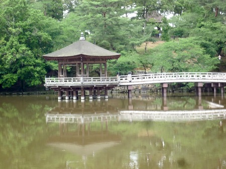 321奈良公園9.JPG