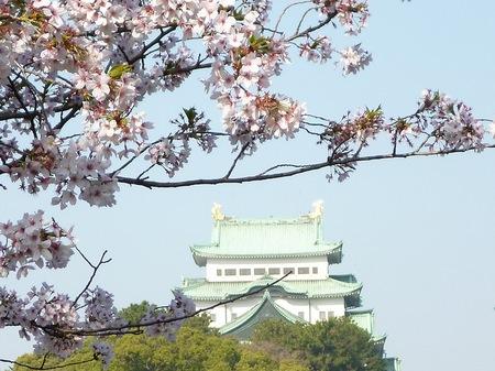 673名古屋城散歩3.JPG
