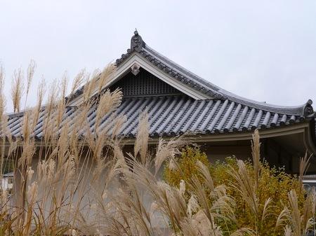 919橘寺10.JPG
